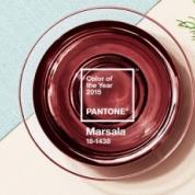 Marsala - A Cor do Ano.